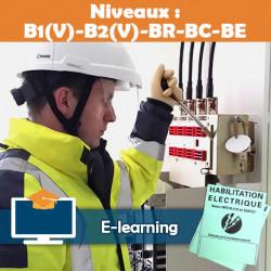 Formation  B1V B2V BR BC BE  - e-learning