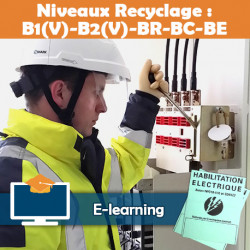 Formation  B1V B2V BR BC BE - recyclage - e-learning